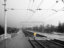 Regnig långt station (BW-Y) Royaltyfria Bilder