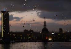 Regnig morgon i hålan Haag Arkivbild