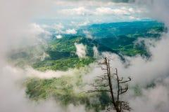 Regnig säsong för dimma Arkivbilder
