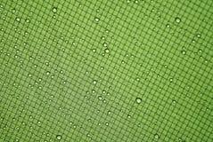 Regnig tentyttersida Arkivbilder