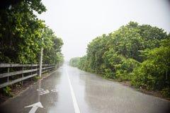 regnig väg Fotografering för Bildbyråer