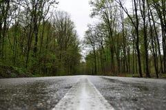 Regnig väg i Valeni Arkivfoton
