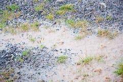 Regnig våt jordning Royaltyfri Bild
