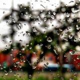 Regnigt lynne 3 Royaltyfri Foto