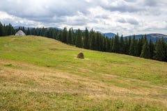 Regnigt väder i Carpathian berg Arkivbild