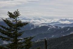 Regnmoln som sätter i dalarna nedanför den Clingmans kupolen GSMNP Arkivbild