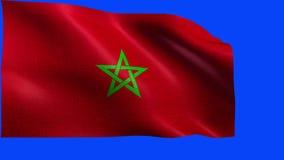 Regno del Marocco, bandiera - del CICLO senza cuciture stock footage