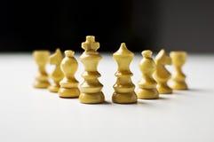 Regno di scacchi Fotografia Stock Libera da Diritti
