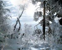 Regno di Snowy immagini stock