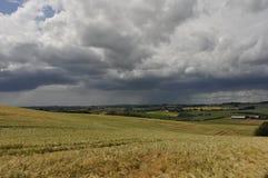 regnsommar Fotografering för Bildbyråer