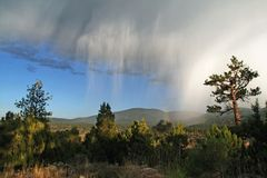 regnstorm Arkivbilder