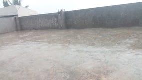 Regnvatten Arkivfoto