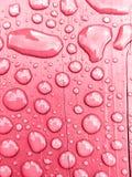 regnvatten på rosa bakgrund Arkivfoton