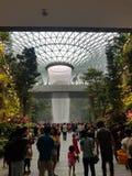 Regnvirvel@ Changi juvel arkivfoton