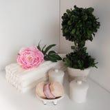Regolazione del bagno nei colori bianchi e rosa Asciugamano, olio dell'aroma, fiori, sapone Fuoco selettivo, orizzontale Immagine Stock