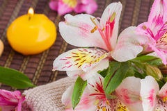 Regolazione della stazione termale con i fiori di alstroemeria Fotografie Stock