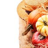 Regolazione di autunno con le zucche raccolte Fotografia Stock