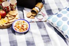 Regolazione di picnic con la frutta fresca e gli spuntini Immagine Stock