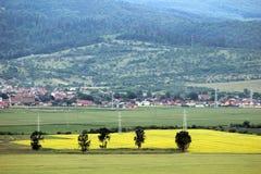 Regolazione rurale Fotografia Stock