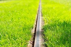 Regoli la ferrovia con erba verde fresca a tempo soleggiato immagini stock libere da diritti