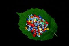 Regrind on fresh leaf Stock Photos