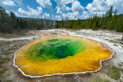 Regroupement de gloire de matin, Yellowstone Photos stock