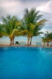 Regroupement et plage tropicaux Image stock