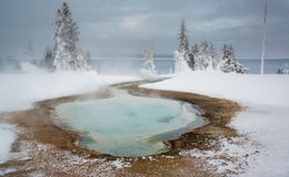 Regroupement thermique au pouce occidental, Yellowstone Photo stock
