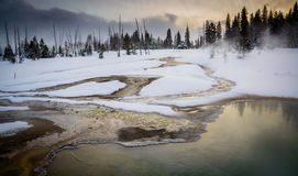 Regroupement thermique au pouce occidental, Yellowstone Images stock