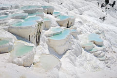 Regroupements de travertin chez Pamukkale Photo libre de droits