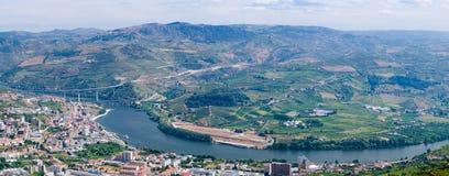 Regua, vineyars no vale de Douro fotografia de stock