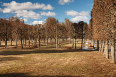 Regular park in Arkhangelskoye estate in the spring. Stock Photos