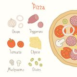 Regular pizza ingredients. Vector EPS 10 hand drawn illustration royalty free stock image