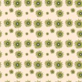 Regular seamless pattern. Seamless regular pattern with floral design Stock Images