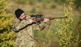 Regulation of hunting. Hunter hold rifle. Bearded hunter spend leisure hunting. Focus and concentration of experienced. Hunter. Hunting masculine hobby concept royalty free stock images