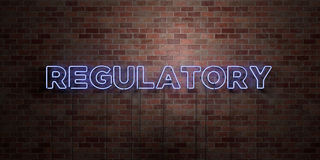 REGULATORY - fluorescent Neon tube Sign on brickwork - Front view - 3D rendered royalty free stock picture Royalty Free Stock Photos