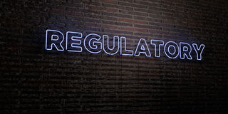 REGULATORY -Realistic Neon Sign on Brick Wall background - 3D rendered royalty free stock image. Can be used for online banner ads and direct mailers Royalty Free Stock Photos
