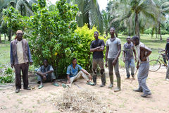 REHABILITATION OF FORMER FIGHTERS IN COTE D IVOIRE (SARD). Ex-combatants in Ivory Coast hidden in the forest now decide to reintegrate by transitional pathway Stock Photos