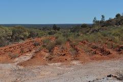 Rehabilitation of mine site regrowth rehabilitate. Mine site rehabilitation and regrowth rehabilitate of natural bush Stock Photo