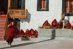 Rehearsal of the mask dance at the ancient monastery in Leh,Ladakh. royalty free stock images