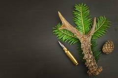 Rehgeweih und -nadeln Verkäufe des Jagdbedarfs Einladung zur Jagdsaison Werbung auf Jagdmunitionen Lizenzfreies Stockfoto