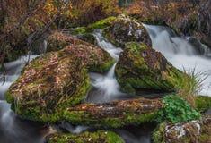 Reißender Fluss und gefallene Blätter auf den Felsen Lizenzfreie Stockbilder