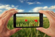Reißendes Bild des Handys Stockfotos