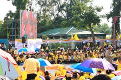 Rei Bhumibol Crest de Rama IX, em sua celebração do aniversário do th 86 Imagem de Stock Royalty Free