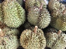 Rei das frutas, durian imagens de stock royalty free