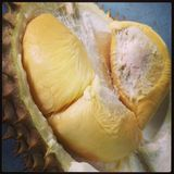 Rei do Durian do fruto Fotografia de Stock Royalty Free