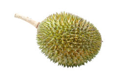 Rei dos frutos, durian no fundo branco Imagens de Stock Royalty Free