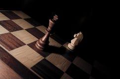 Rei e cavaleiro Imagens de Stock Royalty Free