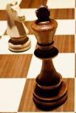 Rei e cavaleiro Imagens de Stock