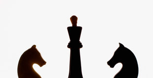 Rei e cavalos da xadrez Fotografia de Stock